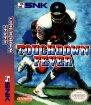 Touchdown Fever (Nintendo NES (NSF))