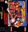 Street Fighter II Turbo (Nintendo SNES (SPC))